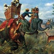 Postcard depicting a tiger hunt